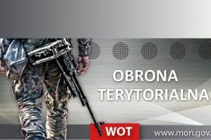 Grafika obrony terytorialnej